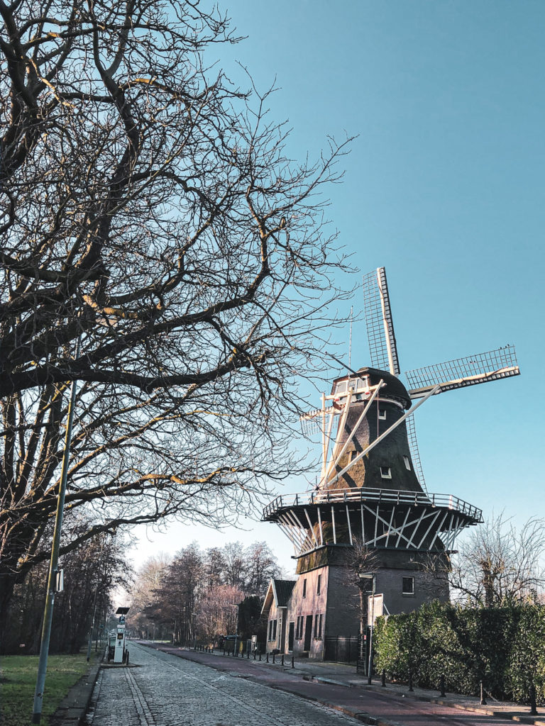 travel note kralingse bos rotterdam atravelnote.nl reisblog