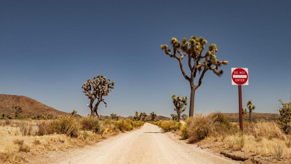 route langs de nationale parken van amerika - a travel note