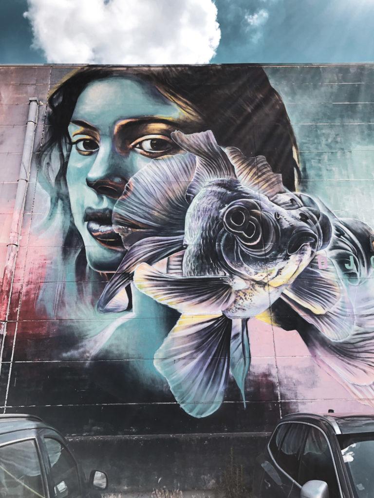 streetart van antwerpen - reisblog