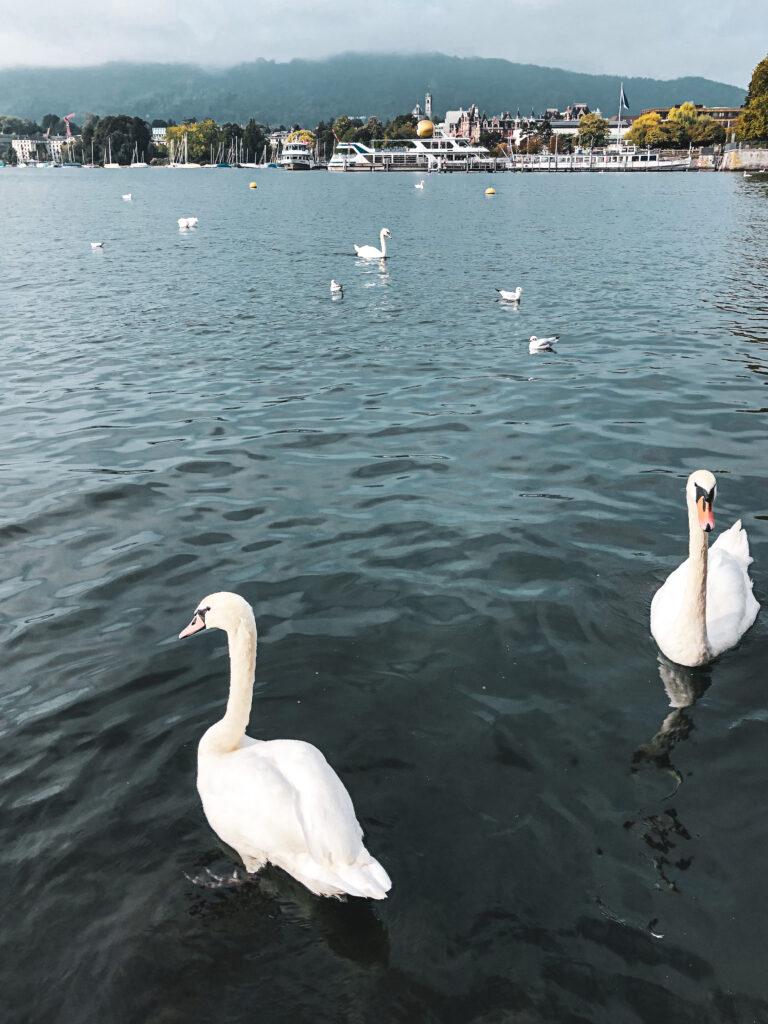 Reisblog - atravelnote - Zürich ontdekken