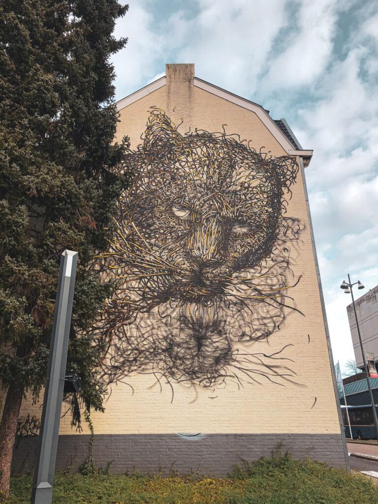 Nederlandse street art steden - reisblog travelnote